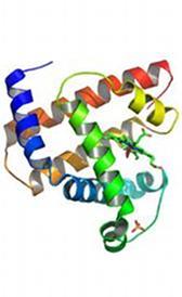 Qué son las proteínas: Definición de proteína